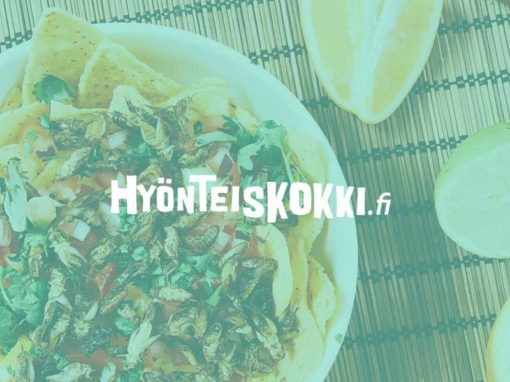 Case: Hyönteiskokki.fi